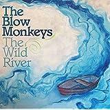 The Wild River (Light Blue 180g Lp+Mp3/Gatefold) [Vinyl LP]