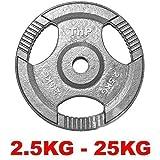 TNP Accessories Cast Iron Standard 1' Radial TRI-GRIP Hammertone Disc Weight Plates EZ Bar Curl...
