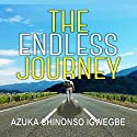 The Endless Journey Audiobook by Azuka Chinonso Igwegbe Narrated by Dickie Thomas