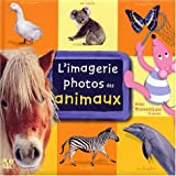 L'imagerie photos de Moustilou - Animaux