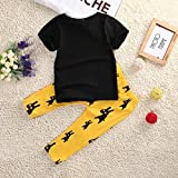 Baby Boys Short Sleeve Graphic T-Shirt and Animal