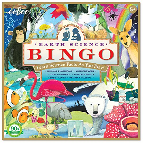 Bird Bingo - eeBoo Earth Science Bingo Game for Kids