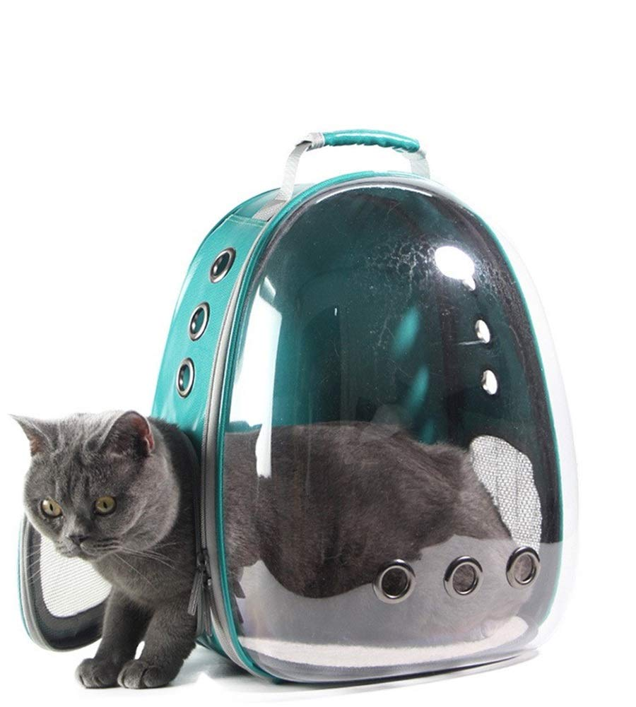 Vedem Pet Transparent Cat Carrier Backpack Puppy Kitty Breathable Carriers Travel (Green)
