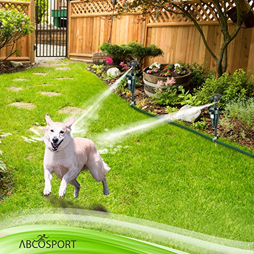 Activated Motion Sensor Water Sprinkler Animal Repellent - Ultra Humane & Safe Way of Scaring Away Wild Animals - Cats, Dogs, Birds, Squirrels, Etc. - Effective Motion Detector Sprinkler - Metal Stake