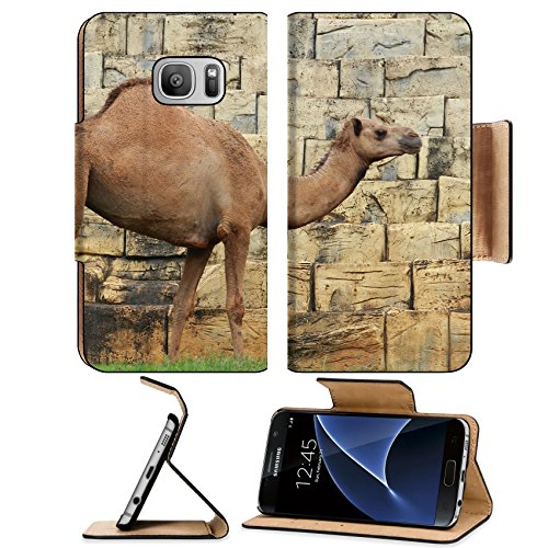 Liili Premium Samsung Galaxy S7 Flip Pu Leather Wallet Case ID: 22671780 camel in the - Guide Caravans Glasses