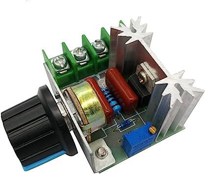 200V SCR 4000W Dimmer Speed Controller Temperatur Regler Volt Regulator+Case+Fan