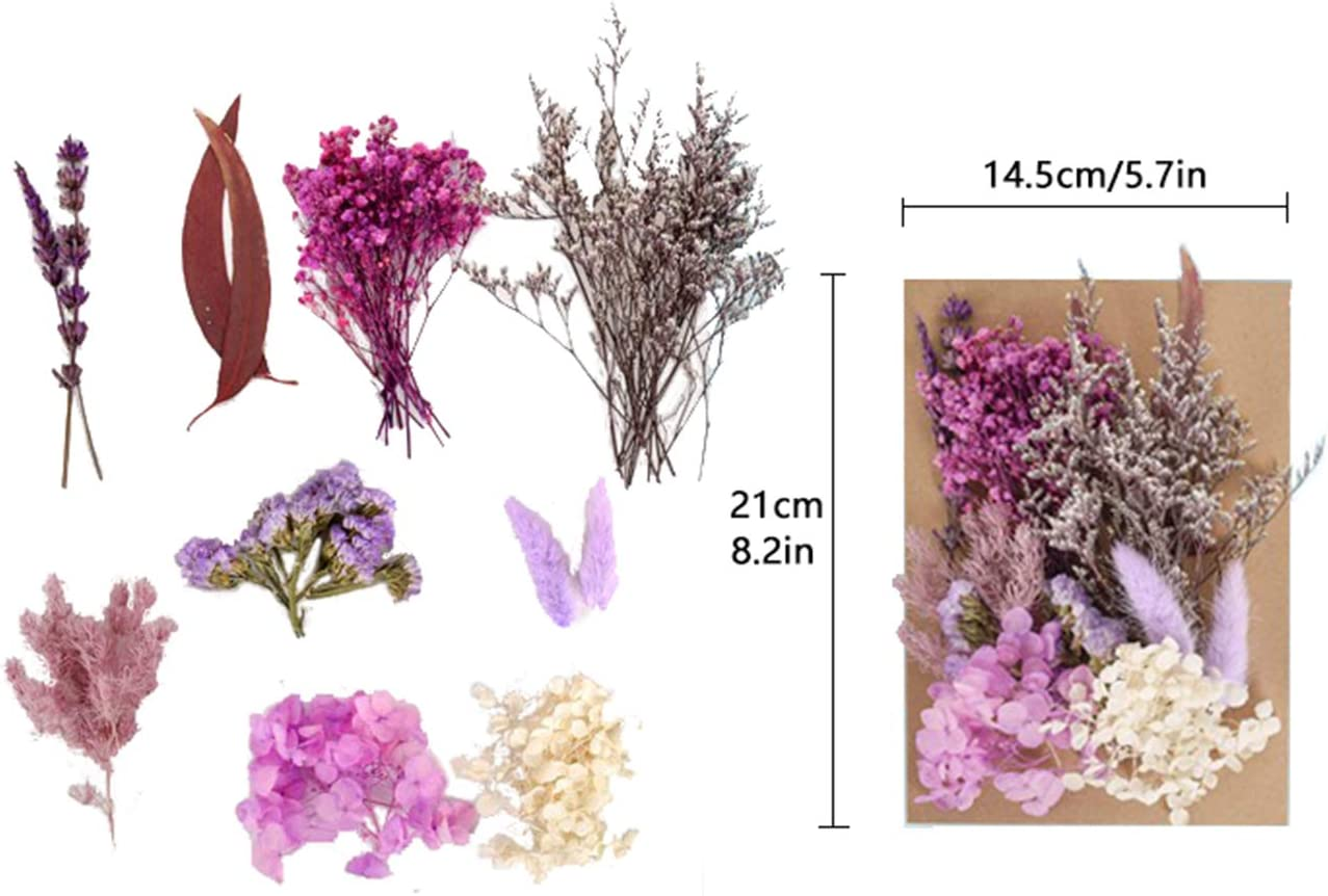 TTO Natural Real Dried Flower Kit for Art Craft Soap Candle Scrapbooking DIY Resin Jewelry Making,Mixed Multiple Assorted Dried Flowers for Home Decoration D