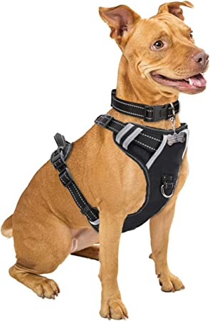 WINSEE Dog Harness