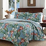Tommy Bahama 220117 Southern Breeze Quilt Set, King, Turquoise