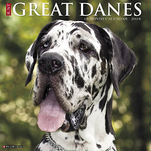 Giants Wall Calendar (Just Great Danes 2018 Wall Calendar (Dog Breed Calendar))