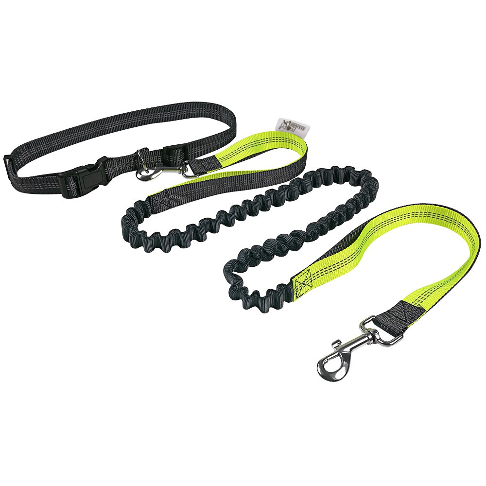 HARBO Handsfree Running Dog Leash - Durable Bungee Leash, Reflective Stitching - Shock Absorbing Adjustable Waist Belt, for Running, Jogging, Walking (Green)