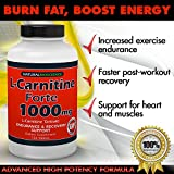 Cheap L-Carnitine – 1000mg in Each Double Potency Tablet – Double Value L-Carnitine Tartrate – Carnitine Amino Acid – Boost Energy and Endurance – High Potency L-Carnitine L-Tartrate Formula – 120 Tablets