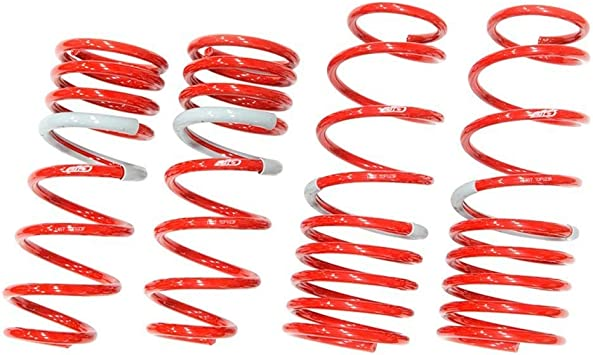 Tanabe TNF075 NF210 Lowering Spring with Lowering Height 1.5//1.5 for 2003-2007 Acura TSX LA-CL9// Honda Accord 4 Cylinder and Lowering Height 1.3//1.0 for Accord V6