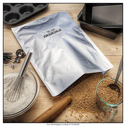 ShieldPro 5 Mil 1-Gallon Mylar Bags + 500cc Oxyen Absorbers for Long Term Food Storage (50)