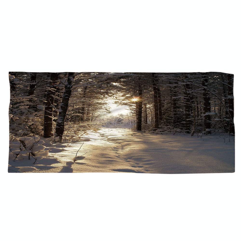 iPrint Large Cotton Microfiber Beach Towel,Winter,Christmas Season with Snow and Frozen Forest Sun Rays Very Cold Woods Scenery Image,for Kids, Teens, and Adults