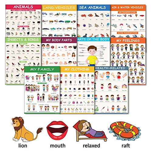 11 Educational Classroom Posters for Toddlers - Body Parts, Feelings & Emotions, Family, Clothing, Health, Vehicles, Animals, Birds & Insects - Learning for Toddlers Classroom Decorations (Animals Chart Learning)