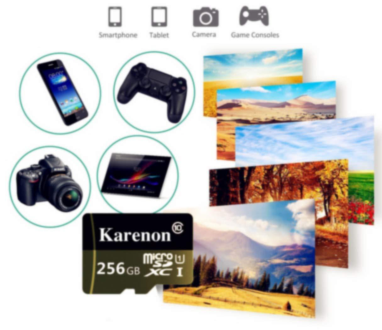 Karenon Tarjeta Micro SD 256 GB, microSDXC 256 GB Class 10 Tarjeta de Memoria + Adaptador (DY135-RS) (256GB)