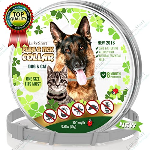 LuksStart Best Natural Pest Control collar for dogs