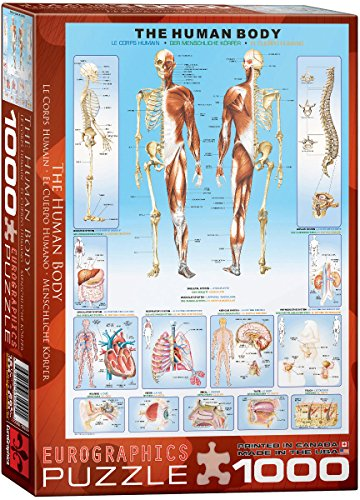 EuroGraphics Human Body Puzzle (1000-Piece)