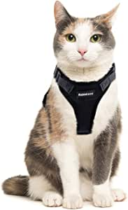 Rabbitgoo Cat Harness Escape Proof Small Dog Vest Harnesses, Adjustable Soft Mesh Kitty Harness for All Weather Walking, Padded Vest with Metal Leash Clip for Small Pets Puppies Kittens Rabbits, Black