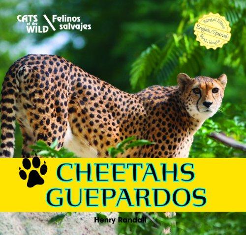 Cheetahs/Guepardos (Cats of the Wild/Felinos Salvajes)