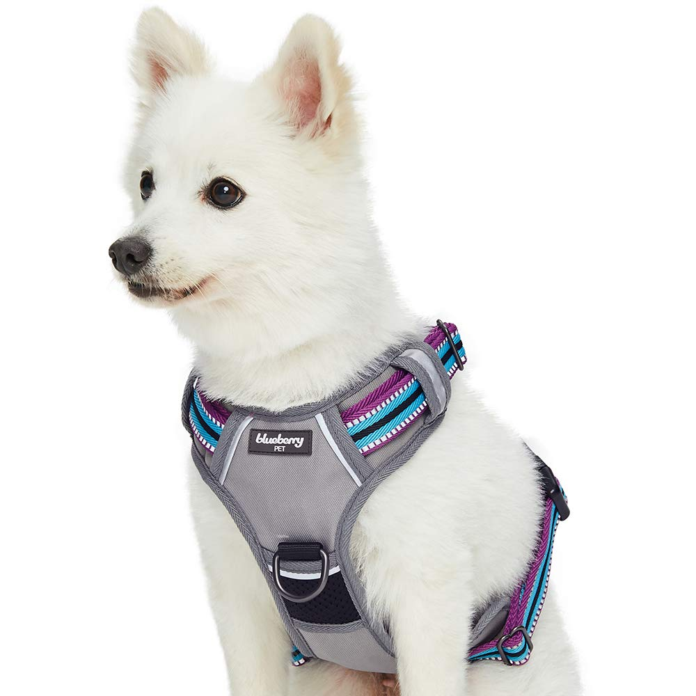 6 Best dog harness for Small, Medium and Large Breed 11