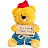 Hollabears Hobo Got Any Spare Hugs? Teddy Bear Plush - Funny and Cute Gift Idea for the Girlfriend, Boyfriend, or Friend