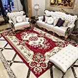 Pile Shag Rug Contemporary Living & Bedroom Soft Shaggy Area Rug Carpet Living Room Sofa Rug Court Style Padded Coffee Table Pillow Rug (Color : B, Size : 0.8 × 1.2 meters)