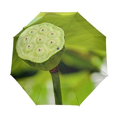 DEYYA Lotus Flower Custom Foldable Sun Rain Umbrella Wind Resistant Windproof Folding Travel Umbrella