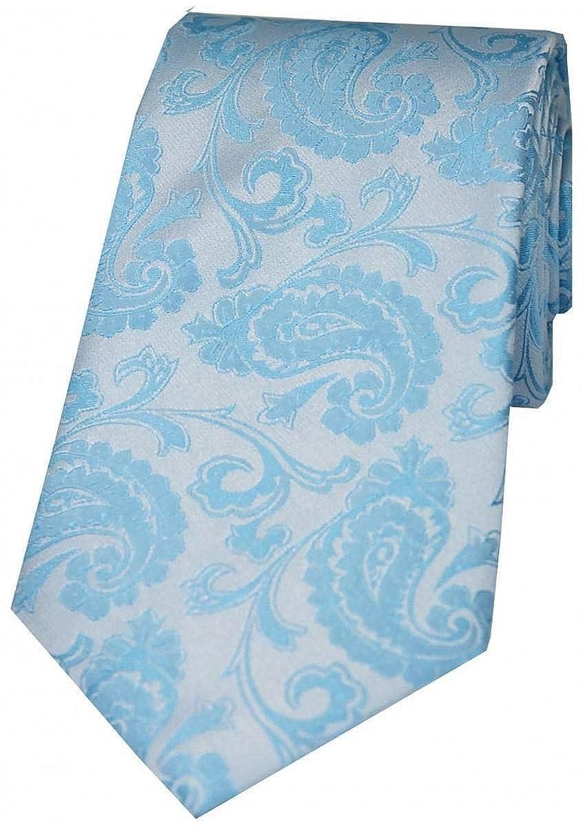 David Van Hagen Mens Luxury Paisley Silk Tie Pastel Blue