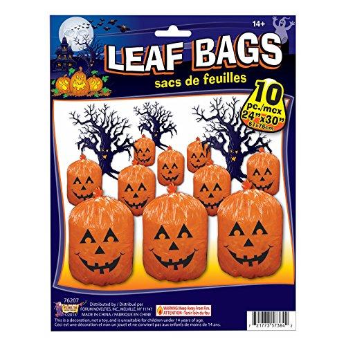Pumpkin Jack O Lantern Halloween 24