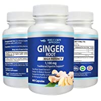 Beaver Brook Ginger Root High Potency 1,100mg All Natural, Non-GMO, Dietary Supplement...