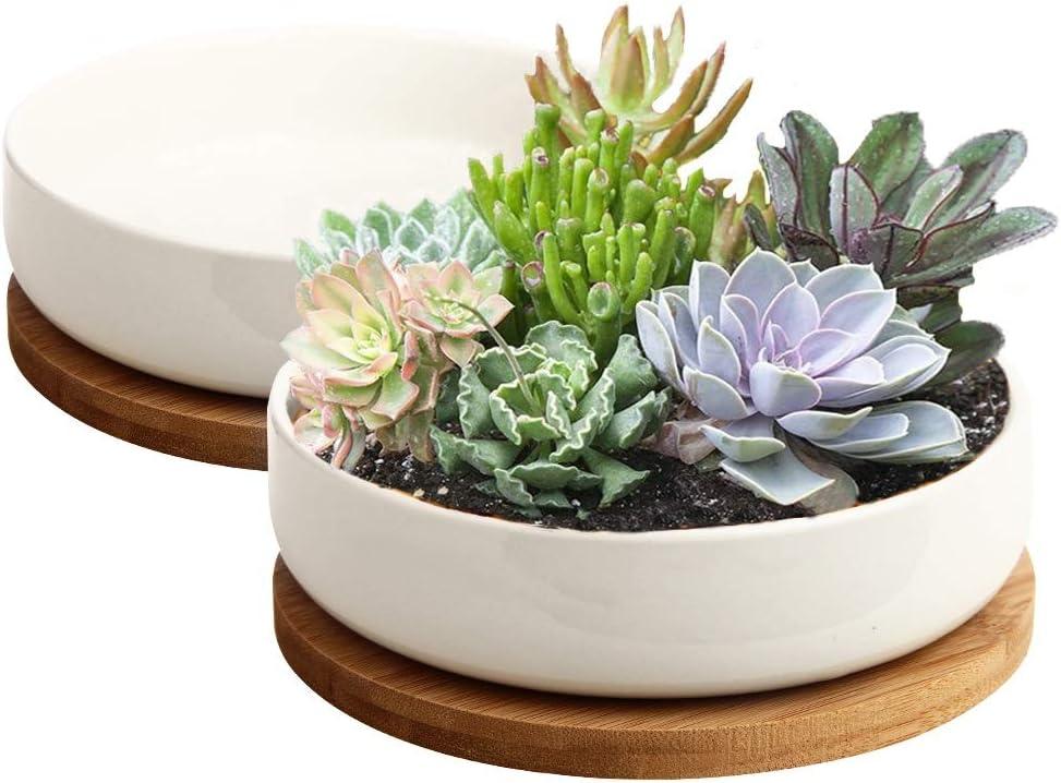 ZOUTOG 6 inch White Ceramic Flower Planter Pot