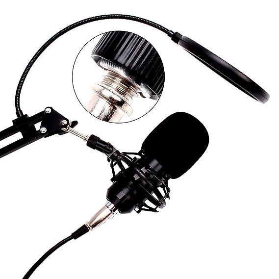 Amazon Com Artempo Professional Studio Condenser Microphone With