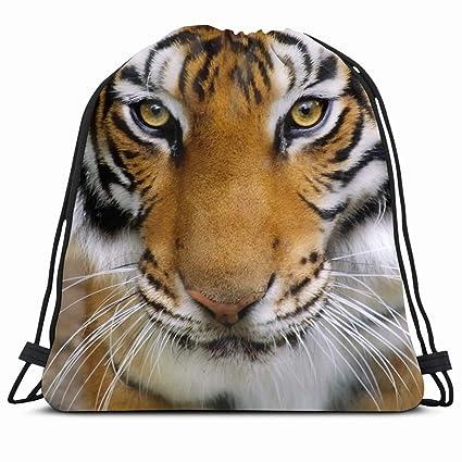 Ahawoso Mochila con cordón 14 x 16 Big Zoo Closeup Tigers ...