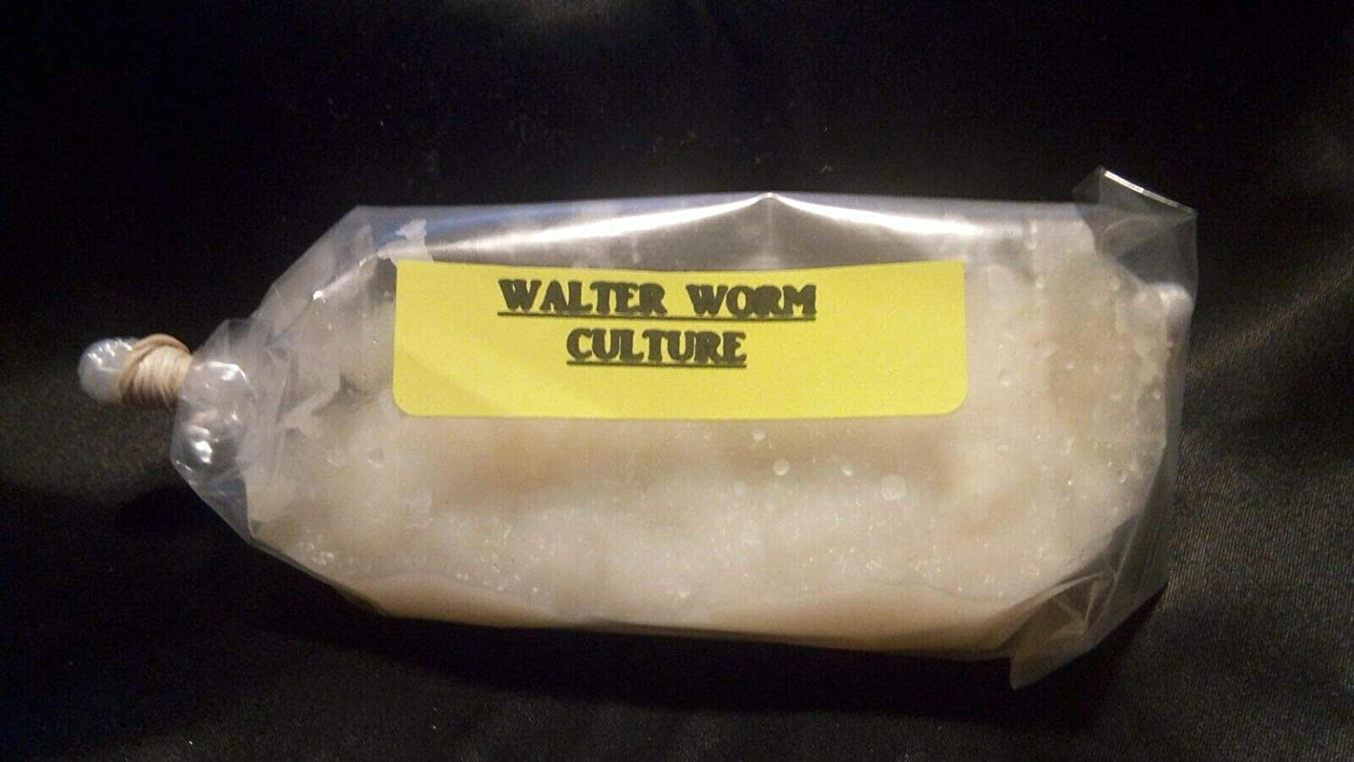 4 OZ Live Walter Worms Culture Panagrellus Silusioides Fry Food Guppy Betta Barb - B2G1