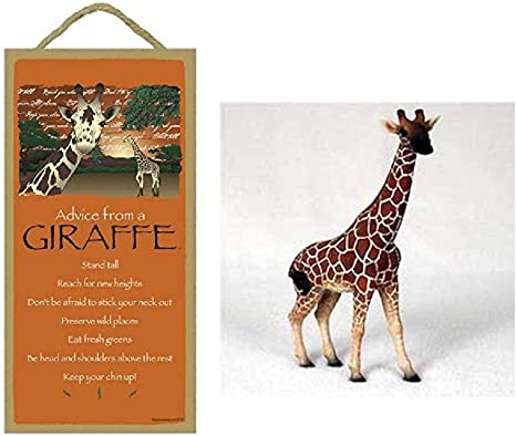 Novelty Gift Token Gift.Wooden Birthday Present Mini Plaque Sign,giraffe