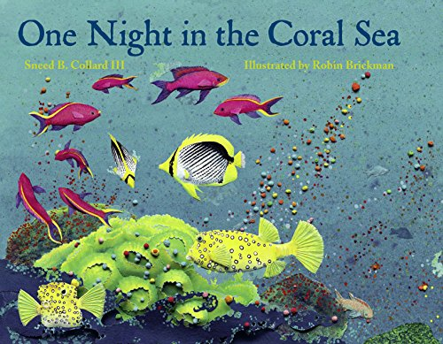 One Night in the Coral Sea (Of The Coral Sea)