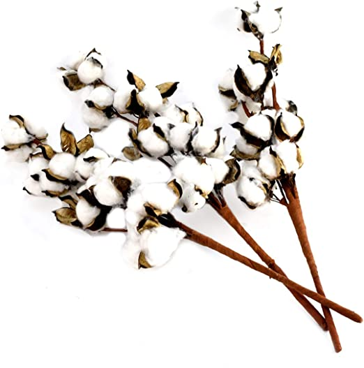 TG,LLC - Juego de 3 Plantas Artificiales de algodón para Rellenar ...