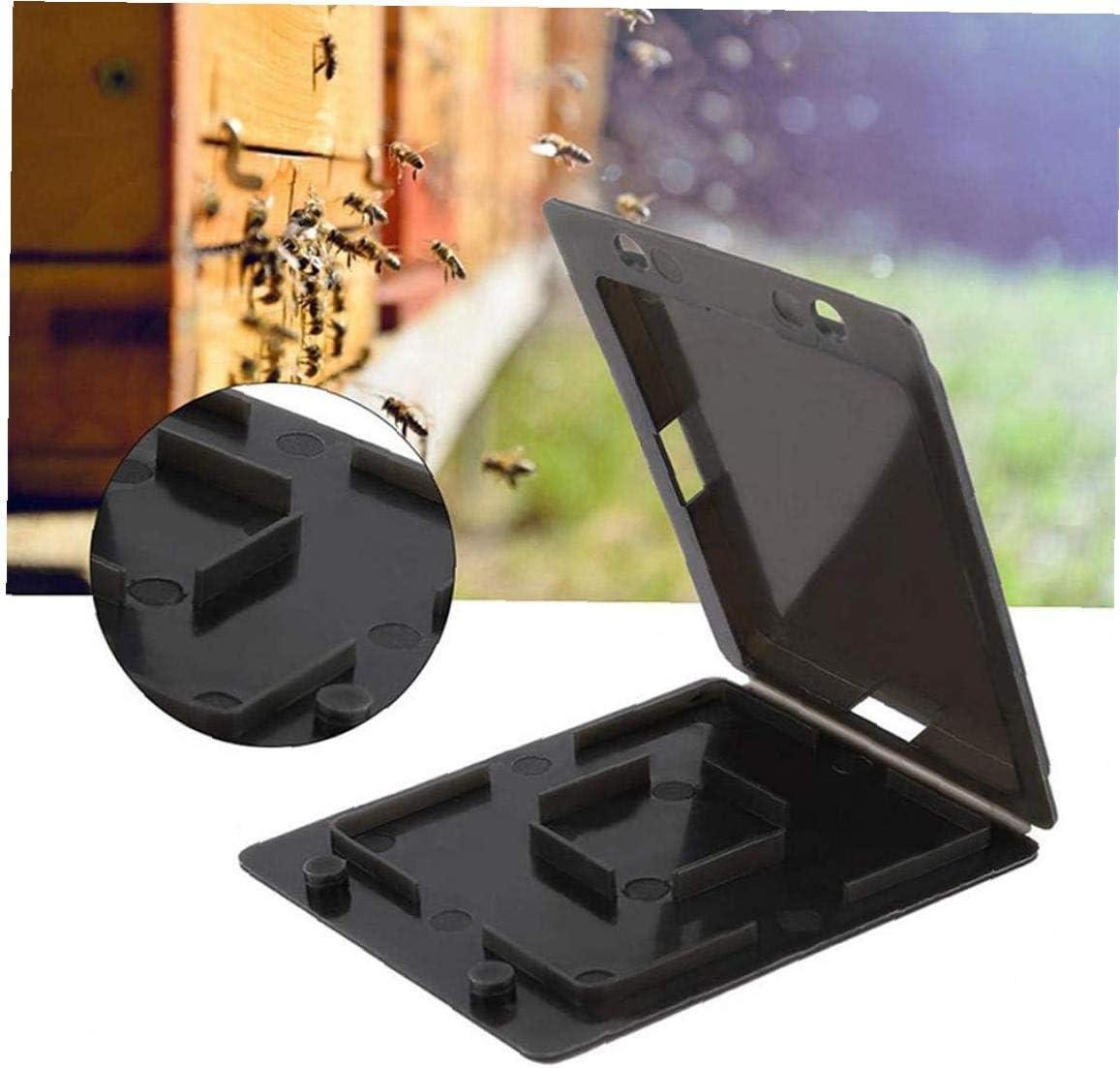 Yililay 10PCS plástico Durable de la Apicultura Escarabajo de la Colmena Escarabajo colector Trampa Trampa Trampa pequeño Escarabajo de la Colmena Caso Negro Herramienta Apicultor
