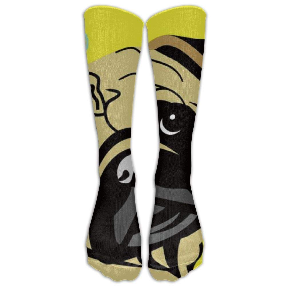 New Fabric Cute Bulldog Corgi And Pet Dogs Knee High Graduated Compression Socks For Women Men - Travel & Flight Socks - Running & Fitness Cute Duck Funny Small Duck Pillow hats