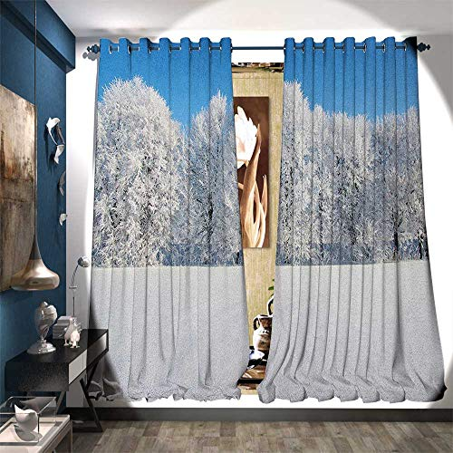 Patterned Drape for Glass Door Frosted Trees in The Forest with Snowy Fields Cool Looking Seasonal Photography Customized Curtains W108 x L84 Blue White