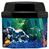 Aquarius AQ15002 Semi-hexagon 5-Gallon Aquarium with Hood and CFL lighting and Mini Might Internal Filter
