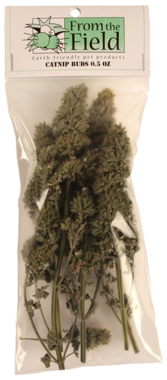 From The Field Catnip Buds, 0.5-Ounce