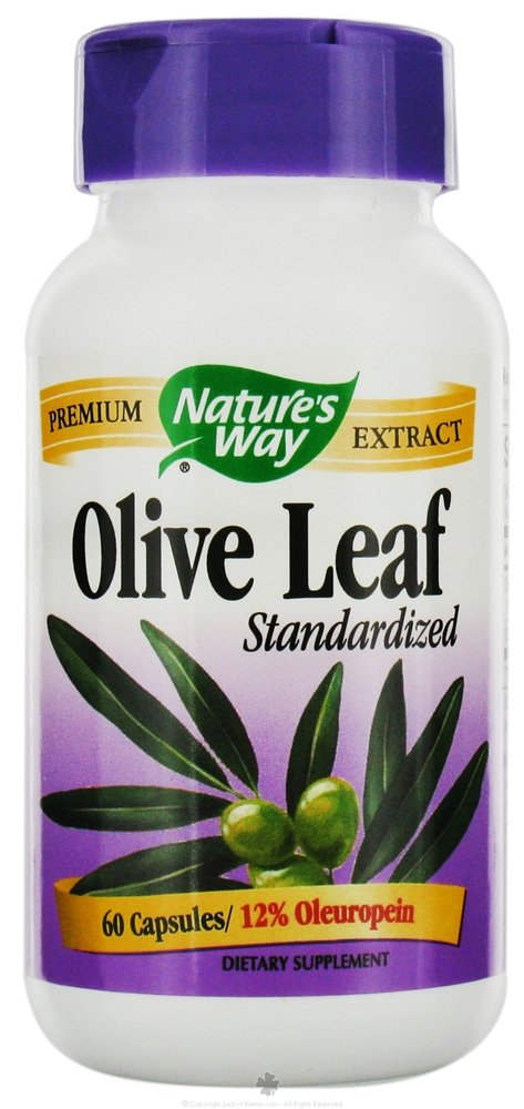 Nature's Way, Olive Leaf Standardized Extract, 60 Capsules