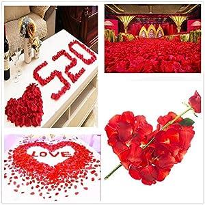 Wonderfullife Mixed Red Petals & Pink Petals & White Petals Silk Artificial Rose Petals for Wedding Party Decorations. 5