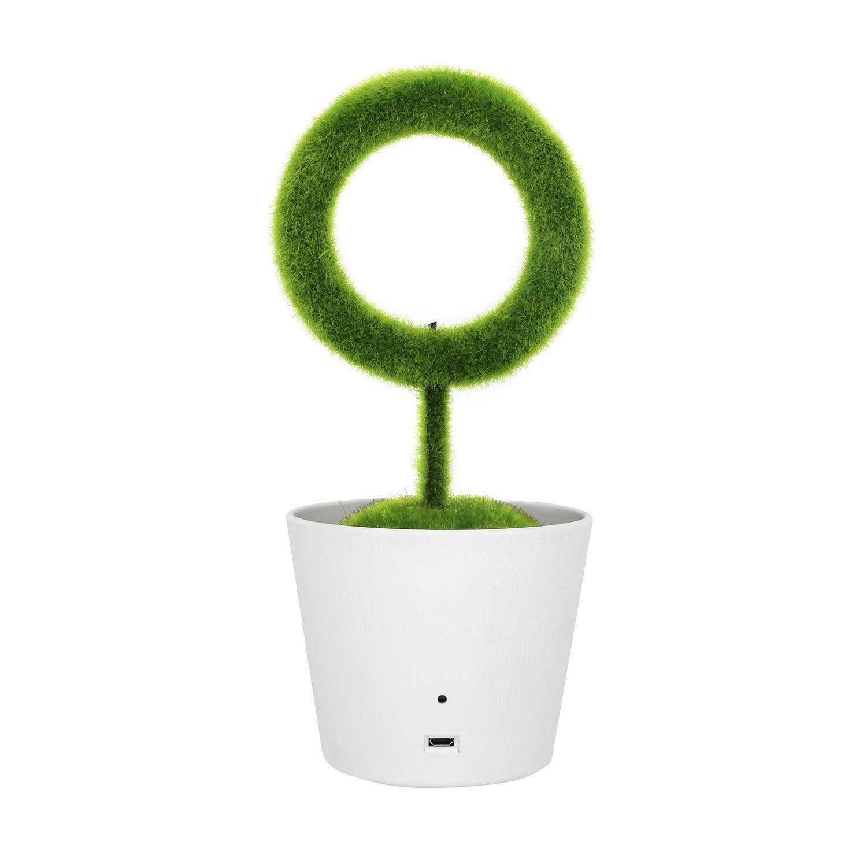 Cucumber Store, Plant Air Purifier