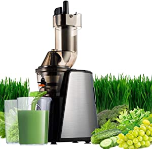Juicer Extractor,SOMOYA 2020 New Masticating Juice Machines Easy to Clean 150W Quiet Motor Fruit Juicer Wide Chute Anti-Oxidation High Nutrient Cold Press Extractor