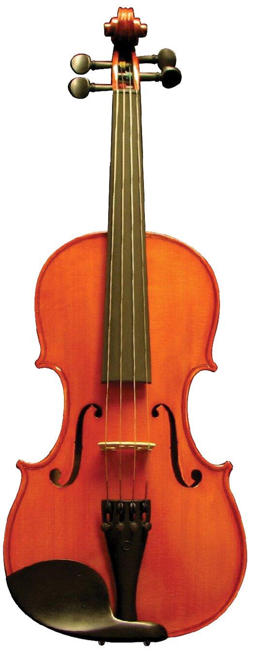 Corde di Salice CS125VN/1/6 Beginner Upgrade Violin Package - Secondo, 1/16