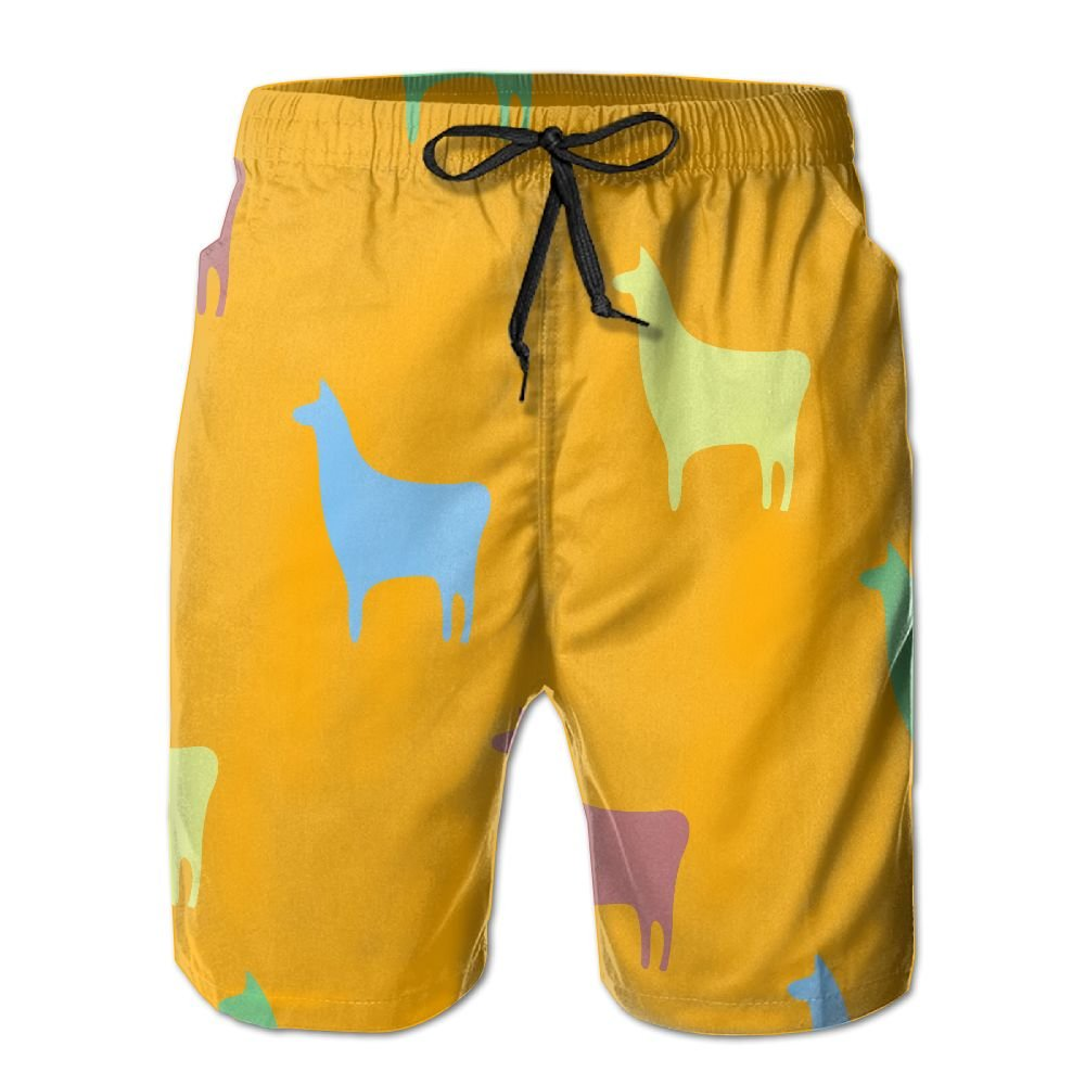 YOIGNG Boardshorts Llama Mens Quick Dry Swim Trunks Beach Shorts